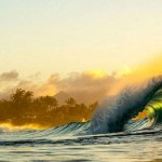 Zak Noyle Green Flash